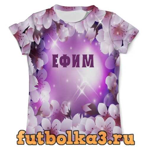 Футболка ЕФИМ мужская