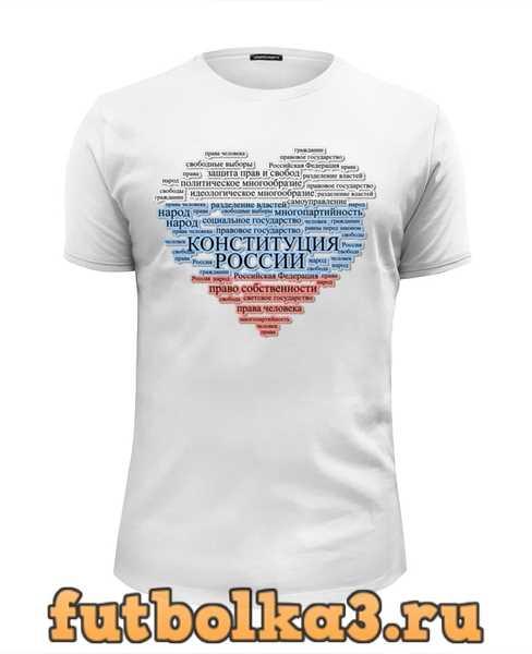 Футболка Глава 1 Конституции РФ кратко (триколор) мужская