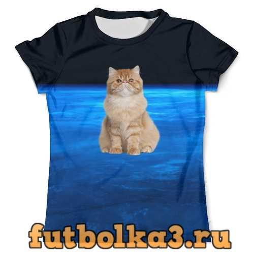 Футболка Кот в космосе мужская