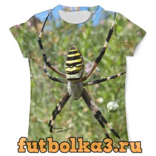Футболка Паук на паутине мужская