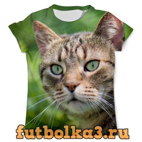 Футболка Целеустремленная кошка мужская