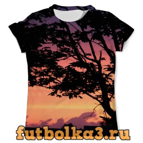 Футболка Закат мужская