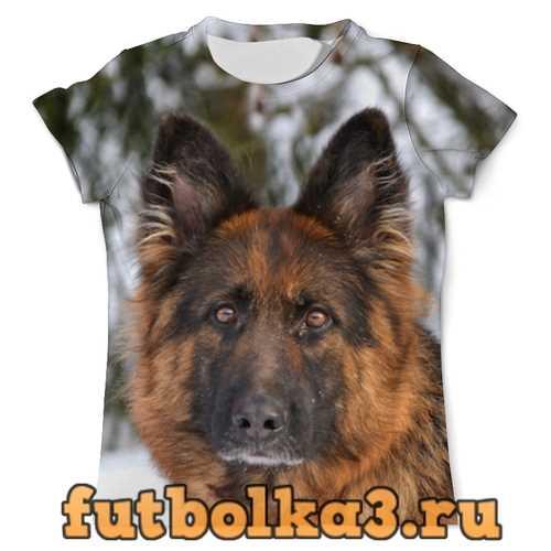 Футболка Зимний пес мужская
