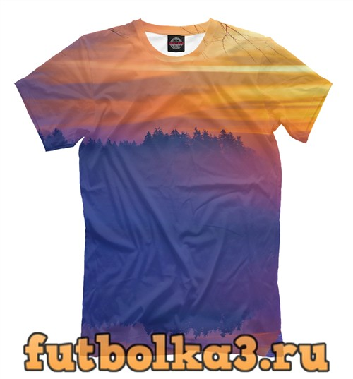 Футболка Colorful lake and sunset мужская