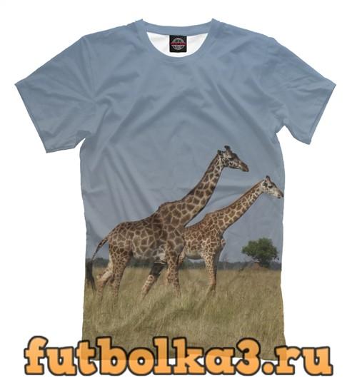 Футболка Пара жирафов мужская