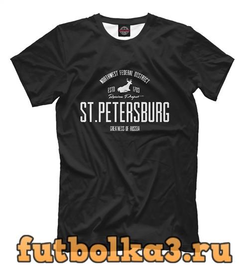 Футболка Санкт-петербург iron мужская