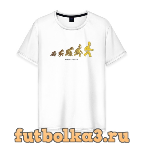 Футболка Эволюция Гомера мужская